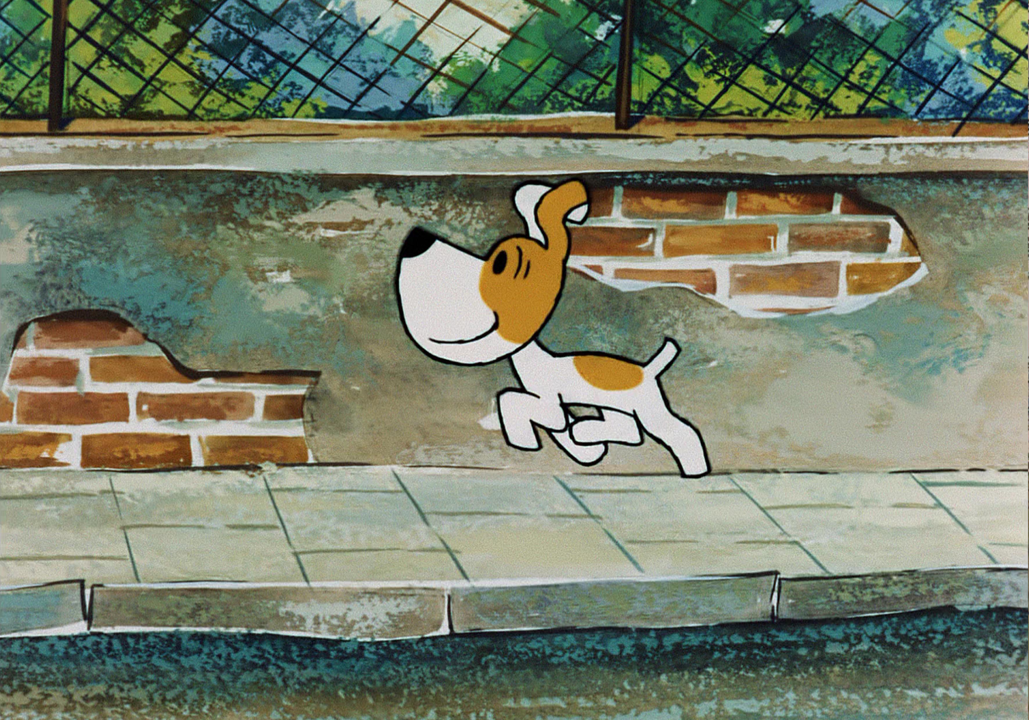 Biało brązowy pies radośnie biegnie po chodniku.