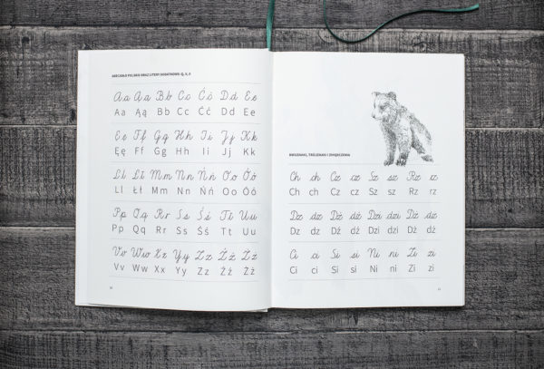 Fragment elementarza, który przedstawia pisane i drukowane litery polskiego alfabetu.