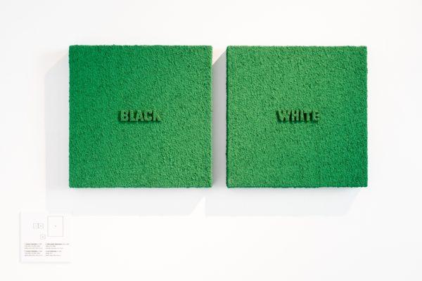 """Dwa obrazy, które wyglądają jak murawa. Na jednym z nich znajduje się wypukły napis """"black"""", na drugim """"white""""."""